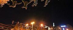 Exploratorium - 110313 - 08 - Homouroboros by Peter Hudson