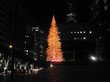 Get Disgustingly Merry At Tomorrow's Christmas Tree Lighting In The FiDi