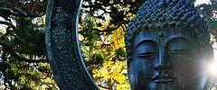 Golden Gate Park - 112913 - 01 - Japanese Tea Garden