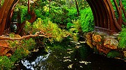 Golden Gate Park - 112913 - 13 - Japanese Tea Garden