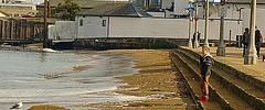 Aquatic Park - 123113 - 17 - King Tide of December 2013