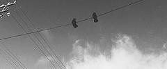 #pasarinhos #nuvens #arame