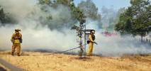 Watch: Brush Fire Burning in San Jose Park