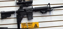 Mountain View Police to Get 20 New AR-15 Rifles