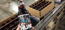 San Jose Sharks Announce Their Own Craft Beer Called Chum