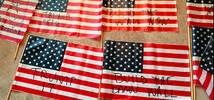 Family Shocked to Find 56 Pro-Trump Flags on Front Lawn
