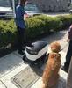 DoorDash Delivery Robots Now Crawling Bay Area Sidewalks