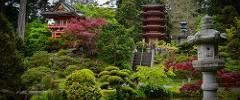 Japan in San Fran