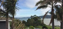 Tiburon Officials, Residents Debate Removal of 42 Trees