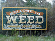 Marijuana Booths May Be Coming To California County Fairs