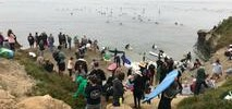 Paddle Out in Santa Cruz Honors Wetsuit Pioneer Jack O'Neill