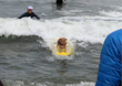 All The Photos And Video From This Weekend's Dog Surfing Contest In Pacifica