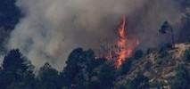 Officials to Make Final Sweep at Oakland Hills Brush Fire