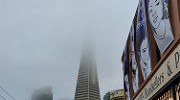 The Transamerica Pyramid disappearing into the summer fog