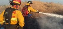 Three-Alarm Brush Fire Threatening Homes in Vallejo