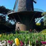 Golden Gate Park - 021618 - 03 - Queen Wilhelmina Windmill